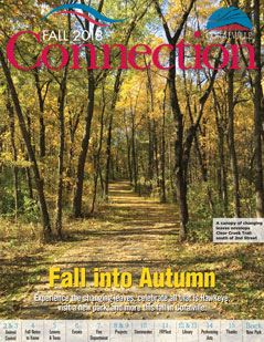 Fall-2018-ConnectionCover239_309